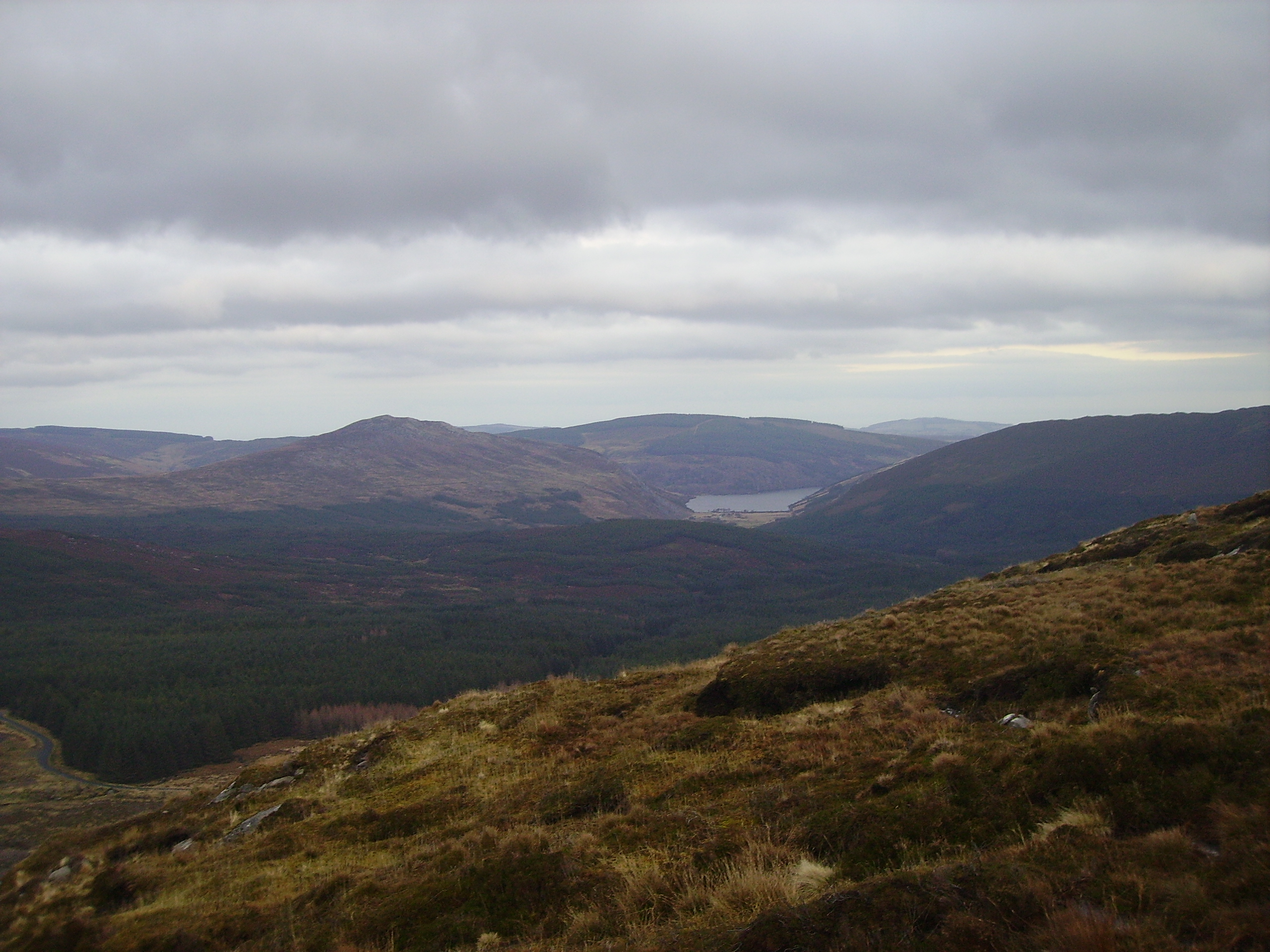 wicklow_landscape.JPG